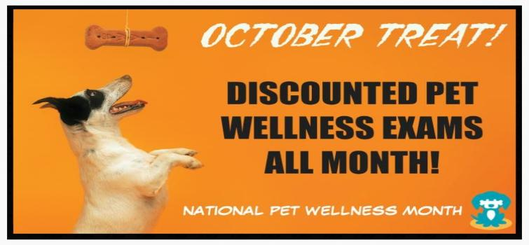 oct-wellness-month-promo-banner-for-website-modified-size